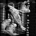 KROVJ S MOLOKOM «Entropy 2000» / CD