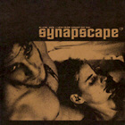 SYNAPSCAPE. SO WHAT