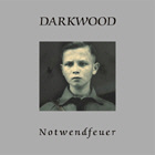 Darkwood - Notwendfeuer