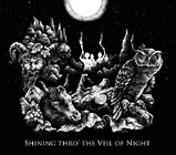 Sunset Wings - Shining Thro' The Veil Of Night